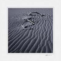 Mesquite Dunes ©Gary Hayes 2005
