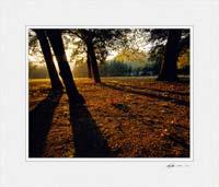 Crystal Palace Park ©Gary Hayes 2005