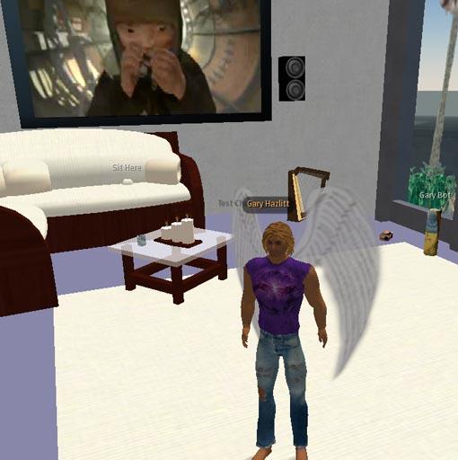 Second Life ARG - streaming media